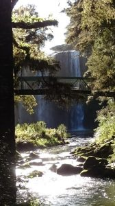 Whangarei_Falls08
