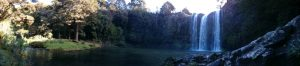Whangarei_Falls10