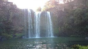 Whangarei_Falls11