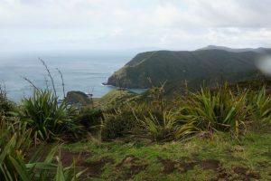 Cape_Reinga03